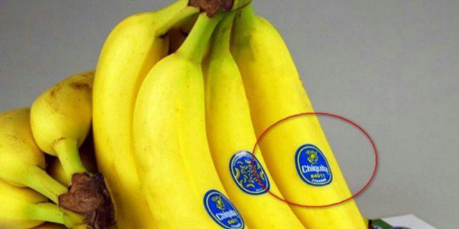 چاپ لیبل روی میوه